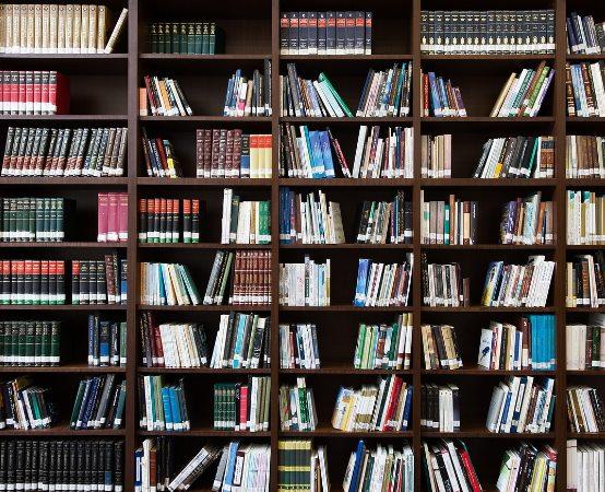 Biblioteka Grodzisk Maz.: Półkolonie letnie w bibliotece - regulamin