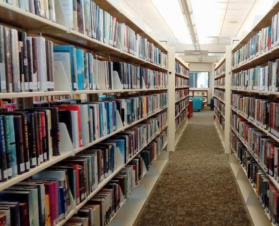 Biblioteka Grodzisk Maz.: Zdjęcia z półkolonii w Mediatece